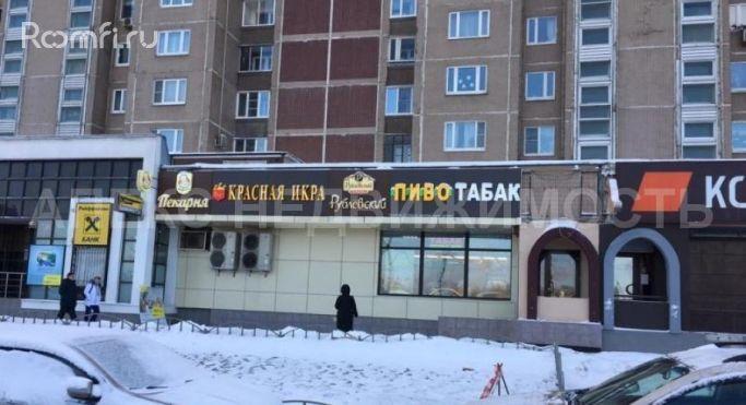 поющие мягкие аренда помещения под магазин у метро лермонтовский проспект цій грі